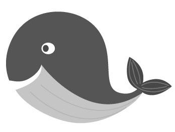남아프리카 공화국 고래 축제(Hermanus Whale Festival)